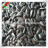 oil sunflower seed ton price
