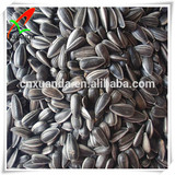 Black original sell good quality sunflower seeds for oil or for bird food
