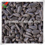 High quality oil content oil sunflower seeds price for sale for oil