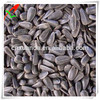 top quality wholesale black oil sunflower seeds for oil