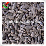 hulled oil sunflower seed ton price