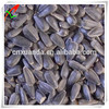 wholesale oil sunflower seed prices for sale for oil