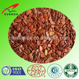 New arrival Inner Mongolia origin best selling red watermelon seeds