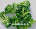 iqf frozen green broccoli floret on sale USA ,Russia