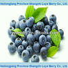 blueberry juice concentrate 65brix