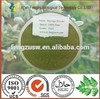 Moringa tree leaf powder health benefits/ moringa leaf polysaccharide / moringa leaf powder capsules