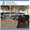 hot dipped galvanized livestock equipment--cattle free stall