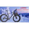 Advanced Hikarbon Full Carbon Fiber 26*16 / 18 /20'' Inch with 5.0 Width Tire Fat Bike Frame