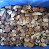 Whole Frozen Boletus Edulis 2014 new crop