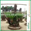 Popular Outdoor Landscaping Trees Multi-stem Cycas Revoluta