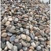 鹅卵石 天然鹅卵石