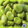 Chinese broad beans,Fava beans,Green broad beans,Green beans