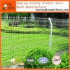 Double Wire Fence/decorative fence/wire mesh fence(manufacture)