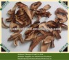 Dried Edible Boletus(Boletus Edulis)