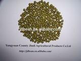 crop 2015 Green mung beans for sales