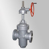 API Parallel Double Plate Gate Valve