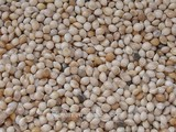 Chinese Yellow Wihte Broomcorn Millet With Cheap Price