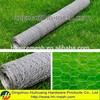 Hexagonal wire netting garden fence