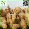 Air Dry Ginger:200g up(Cheap!!)