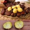 New Crop Bulk chestnuts for sale---Hebei chestnuts