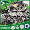 Hubei shiyan Wood Ear Mushroom