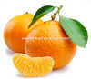 High quality Canned Madarin Orange in syrup 2015