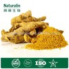 Top Quality From 10 Years experience manufacture ginger root extract