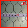 Galvanized Poultry netting