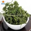 Chinese herb tea dry ginseng flos herb tea