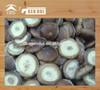 China frozen shiitake mushroom cap
