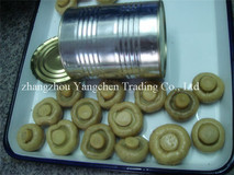 best fresh canned mushroom whole
