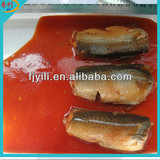 Best Canned fish manufacture canned mackerel Tin fish