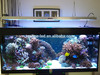 Cheap Ledzeal 400W LED Aquarium Light 60 inch Sunrise and Sunset