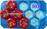 Plastic Tomato Tray