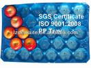 plastic insert tray for fruit