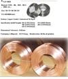 arame liso galvanizado para Brasil ( Anping factory, China )