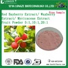 Red Bayberry Extract Powder/ Waxberry Extract Powder/ Myricaceae Extract Powder
