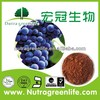 Supply Polyphenols (OPC)95% Grape Seed Extract