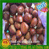 2015 price chestnuts/ chestnuts wholesale/chinese chestnuts for sale/organic roasted chestnuts for sale