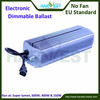 Grow light electronic ballast