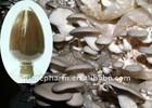 Oyster Mushroom/Pleurotus Ostreatus P.E. Polysaccharide