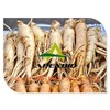 best sellingnatural ginseng extract Ginsenosides panax ginseng extract