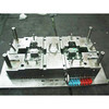 WT20151016 Injection Mold / Mold Cavity 1*2 / High Precision