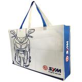 shopping bag/non woven bag/ tote bag/plastic bag/promotional bag