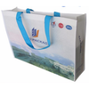 non woven advertising and promotion shopping bag