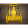 DIN 3352 F5 Resilient Seated Gate Valve