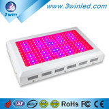 Premium Quality 3W Brigelux chip Full Spectrum 600W LED Grow Light Customized Color Ratio for Agriculture