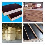 cheap sale WBP glue film faced plywood