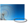 Best price slewing bearing for amusement Rides