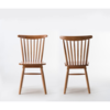 Dinning chair/Wood chair/Leisure chair